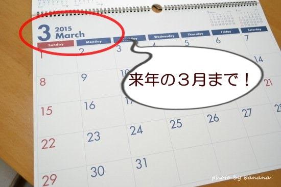 年間カレンダーが便利