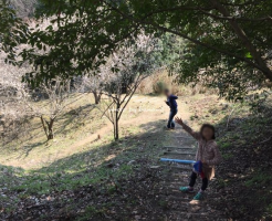 子供の花粉症が治った体質改善体験談